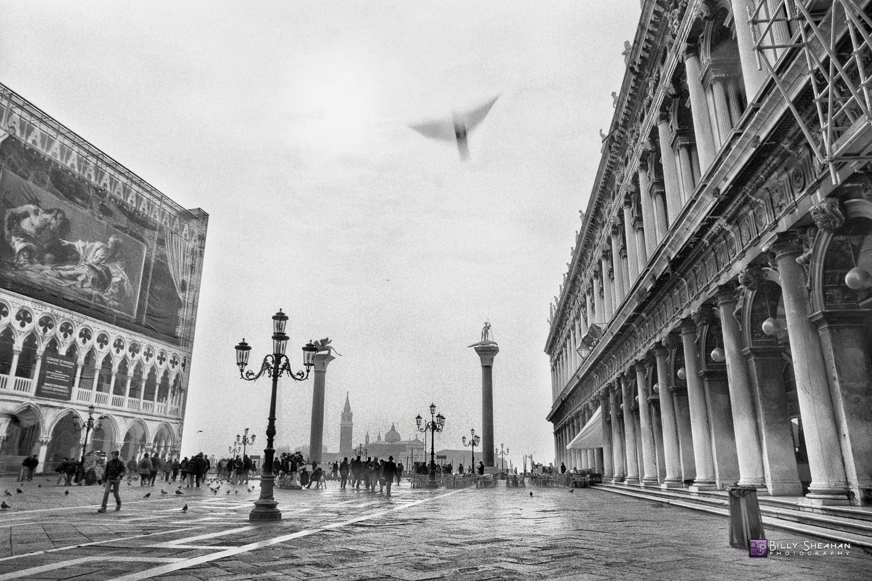 Bird_Over_Piazza_San_Marco,_Venice,_Italy_Italy-642_01_BW_D