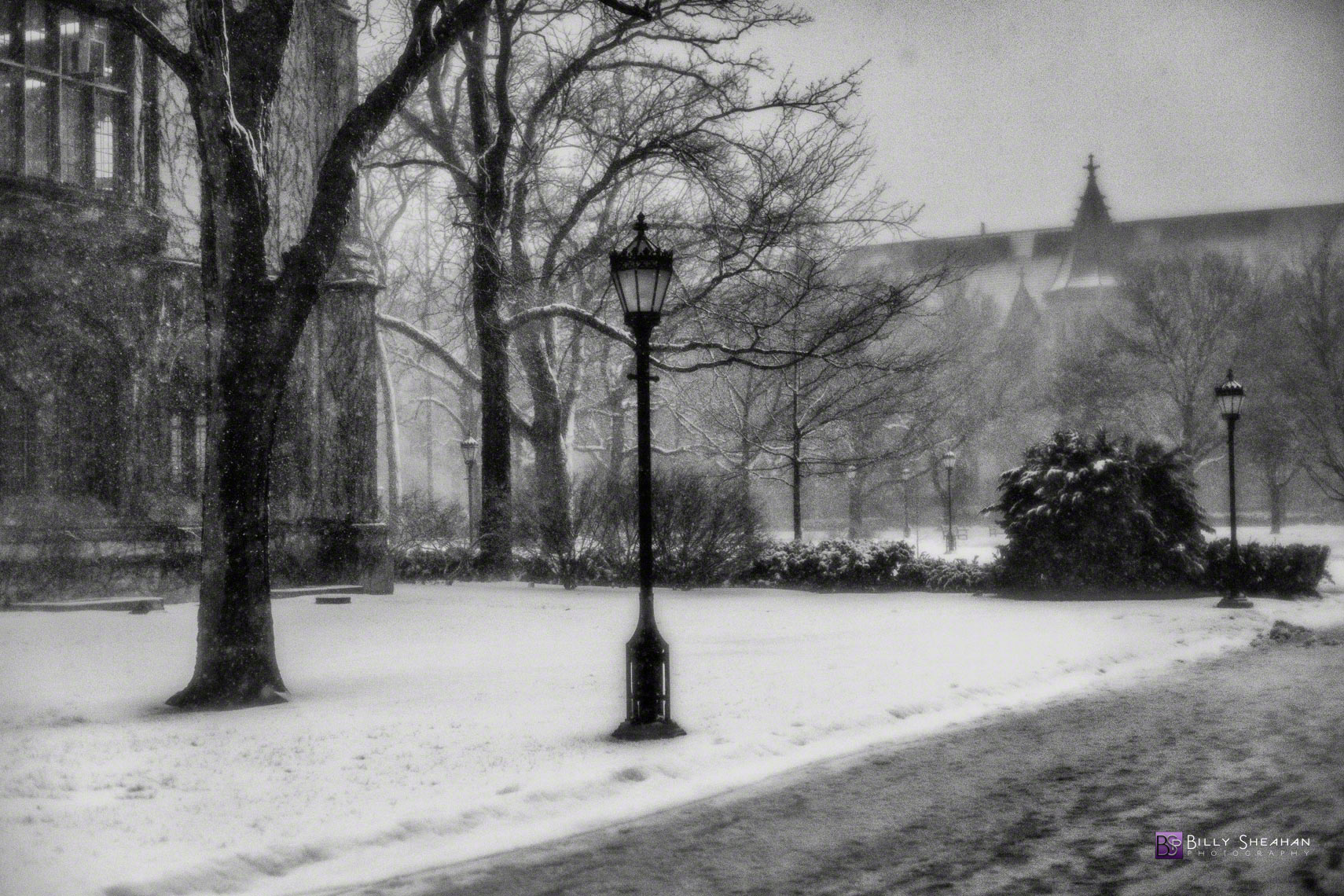 Frozen in Time University of Chicago