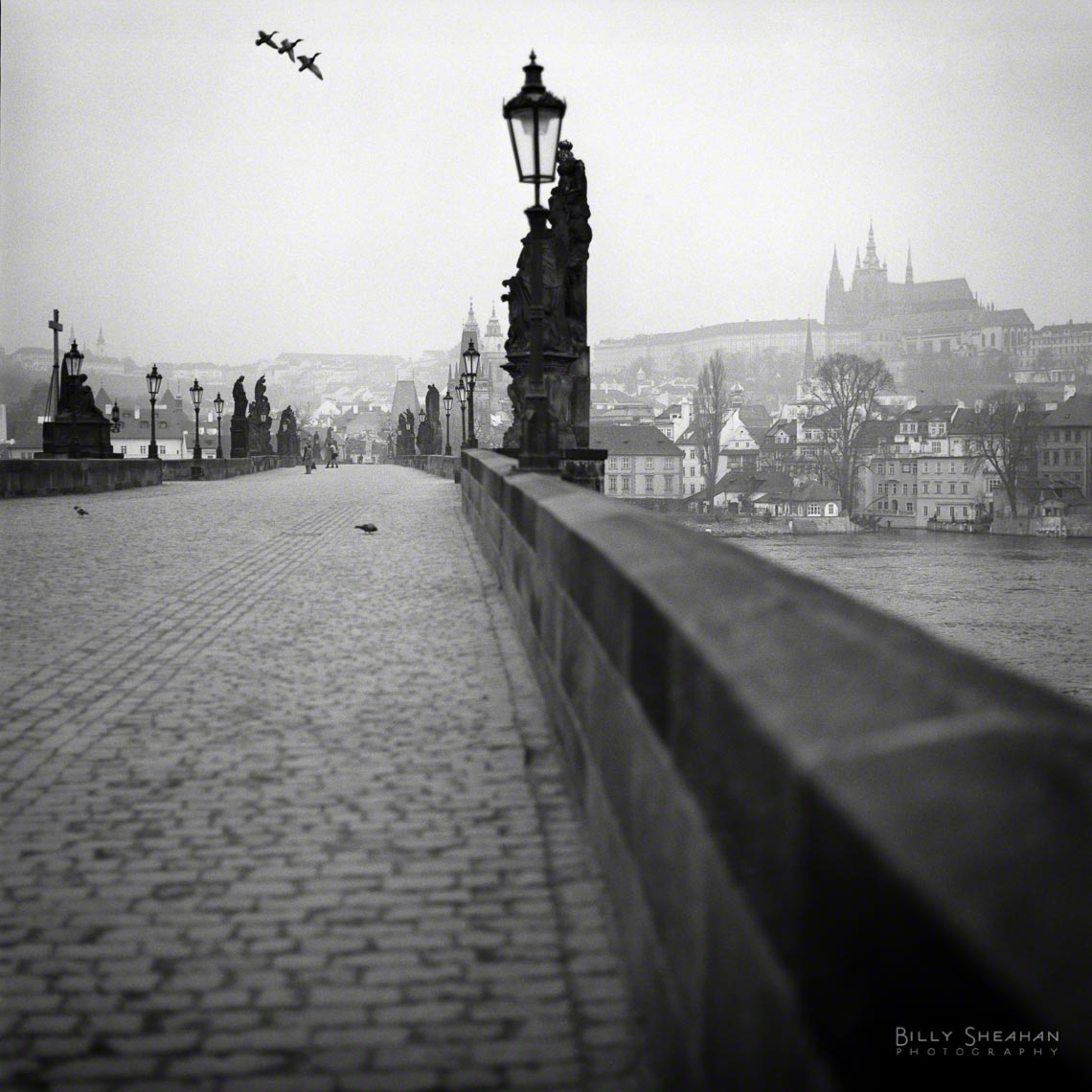 Karlov_Most_Charles_Bridge_Prague-638_10_D.jpg
