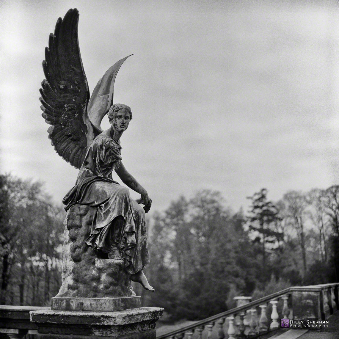 Orangery_Angel__Potsdam__Germany_Germany-362_08_BW_D