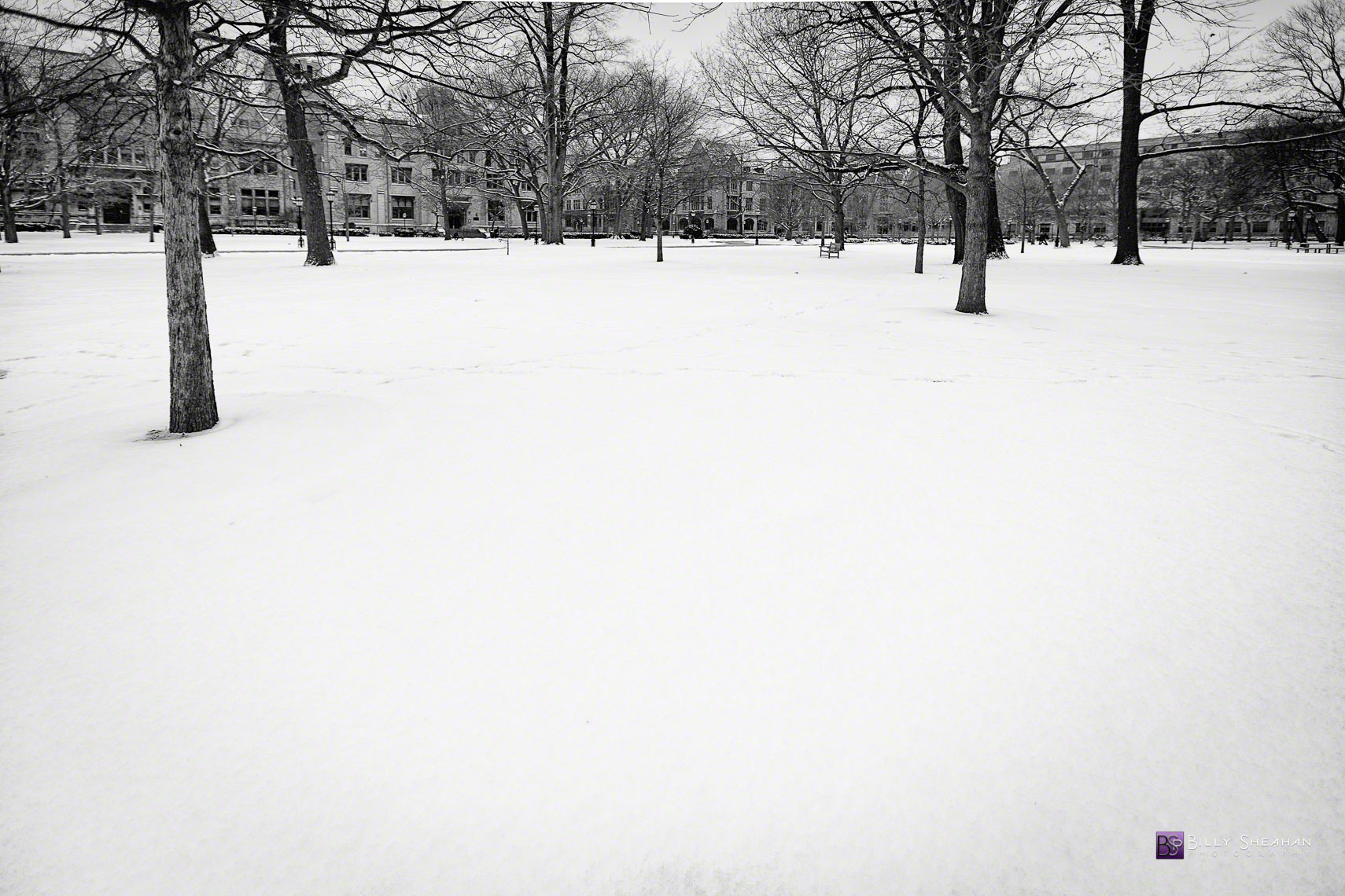 Snow Blanket University of Chicago