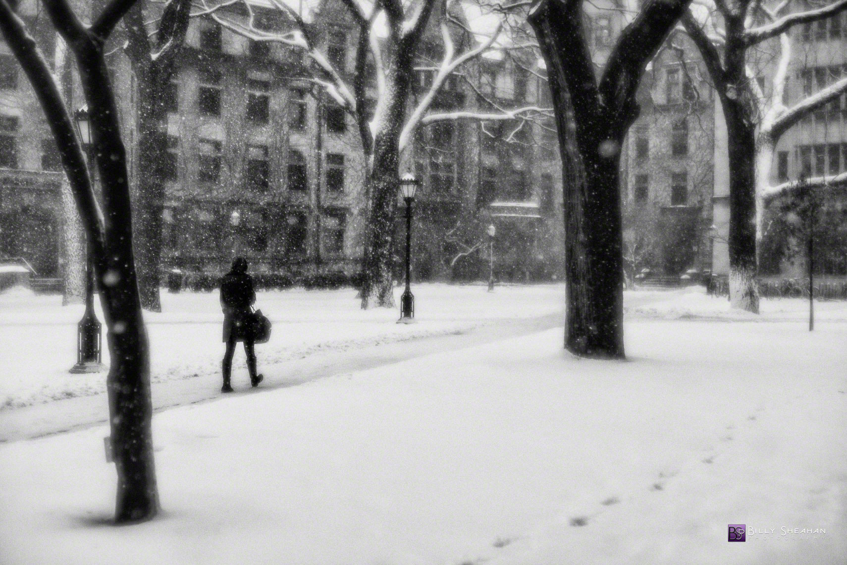 Snow Walk University of Chicago