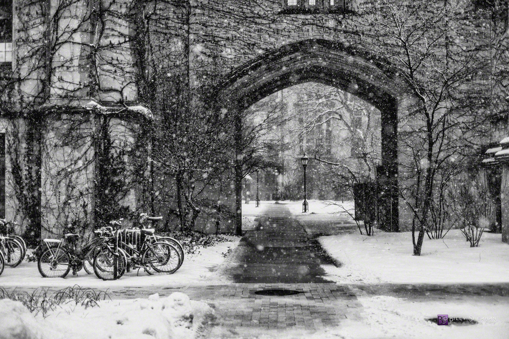 Snowstorm Arch