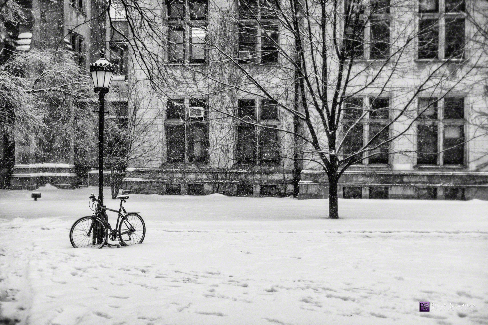 Snowy Bicycle and Lamp Post University of Chicago