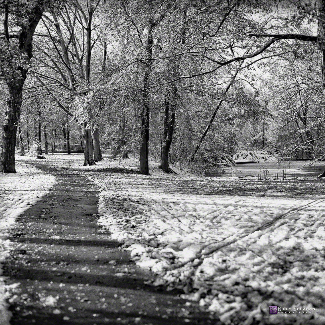 Tiergarten_Snowy_Path__Berlin__Germany_Germany-360_03_BW_D